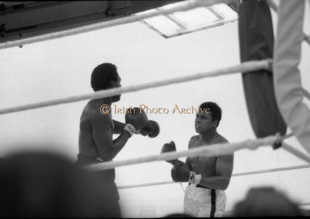 Ali vs Lewis Fight, Croke Park,Dublin.<br /> 1972.<br /> 19.07.1972.<br /> 07.19.1972.<br /> 19th July 1972.<br /> As part of his built up for a World Championship attempt against the current champion, 'Smokin' Joe Frazier,Muhammad Ali fought Al 'Blue' Lewis at Croke Park,Dublin,Ireland. Muhammad Ali won the fight with a TKO when the fight was stopped in the eleventh round.<br /> <br /> Image taken as Lewis and Ali size each other up in the ring.