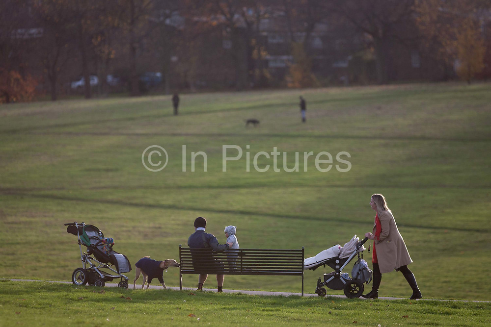 As another woman walks past on a path, a father minds a baby who is taking interest in a pet dog standing seated on a park bench, on 18th November 2016, in Brockwell Park, Herne Hill, Lambeth SE24 south London, England.