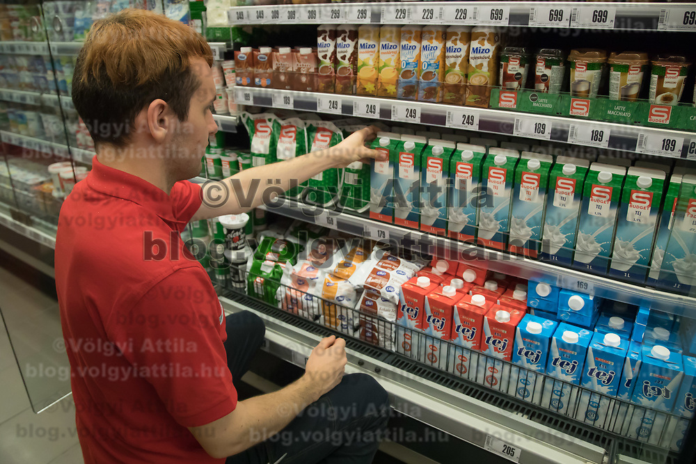 Salesman adjusts milk products on the selves before the official opening ceremony of a new Spar food shop in downtown Budapest, Hungary on Aug. 22, 2018. ATTILA VOLGYI