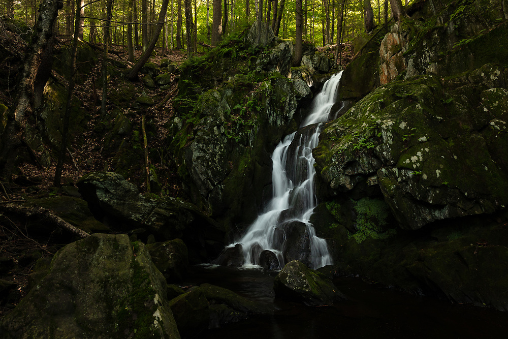 Summertime within the forests at Goldmine Brook Falls.