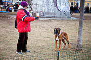 Woman with a beer greeting a dog in Prague Zizkov.