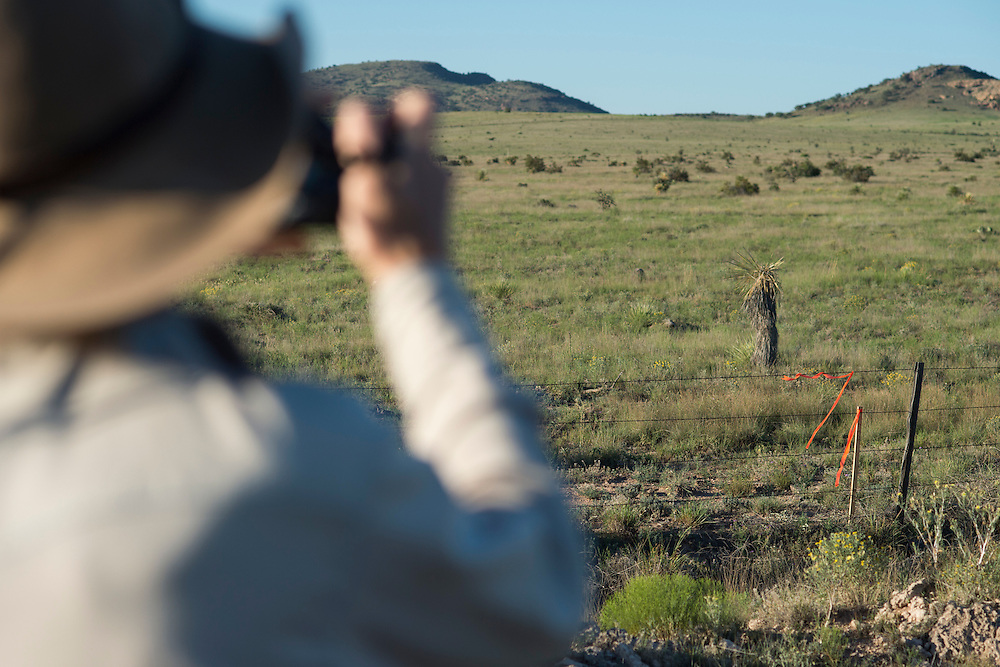 David Keller, an archeologist at Sul Ross University and head of the Big Bend Conservation Alliance, looks out over what is believed to be a part of the Trans Pecos Pipeline in Alpine, Texas on June 17, 2015. (Cooper Neill for The Texas Tribune)