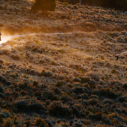 Elisabeth Reed rides past the sunset on the trails of Eagle, Colorado.