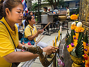28 NOVEMBER 2014 - BANGKOK, THAILAND:  A woman on the plaza in front of Siriraj Hospital lights a candle for Bhumibol Adulyadej, the King of Thailand. The King was born on December 5, 1927, in Cambridge, Massachusetts. The family was in the United States because his father, Prince Mahidol, was studying Public Health at Harvard University. He has reigned since 1946 and is the world's currently reigning longest serving monarch and the longest serving monarch in Thai history. Bhumibol, who is in poor health, is revered by the Thai people. His birthday is a national holiday and is also celebrated as Father's Day. He is currently hospitalized in Siriraj Hospital, recovering from a series of health setbacks. Thousands of people come to the hospital every day to sign get well cards for the King. People wear yellow at events associated with the King because he was born on a Monday, and yellow is Monday's color in Thai culture. It's also the color of the monarchy.      PHOTO BY JACK KURTZ