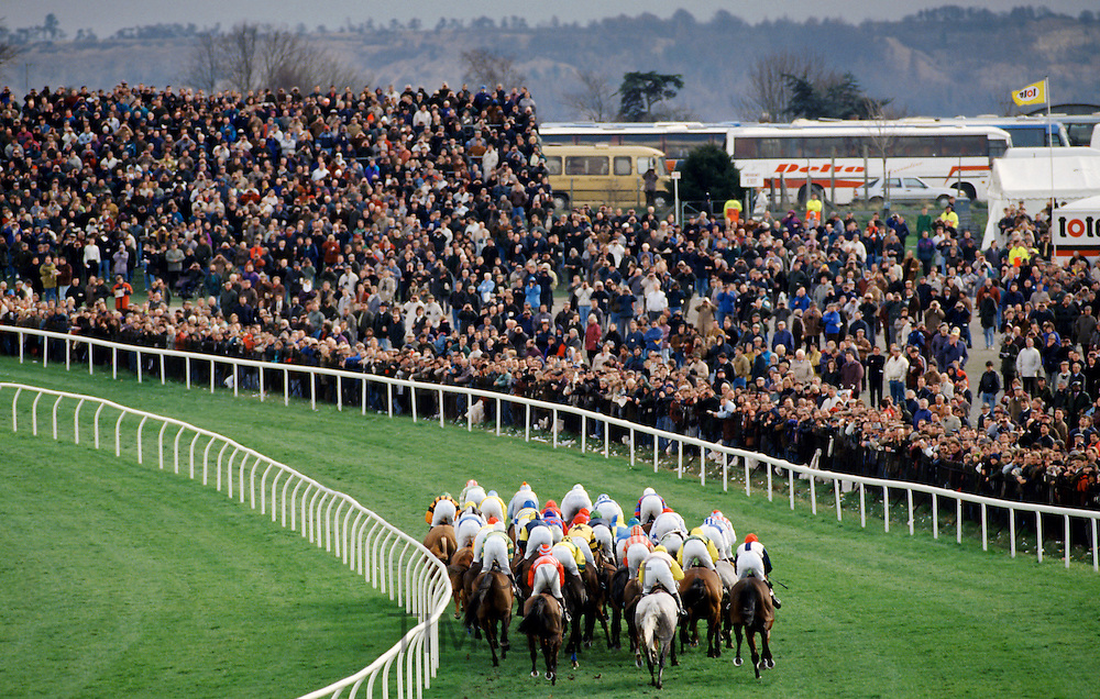 Racehorses and jockeys going over the sticks at Cheltenham Racecourse for the National Hunt Festival of Racing, UK