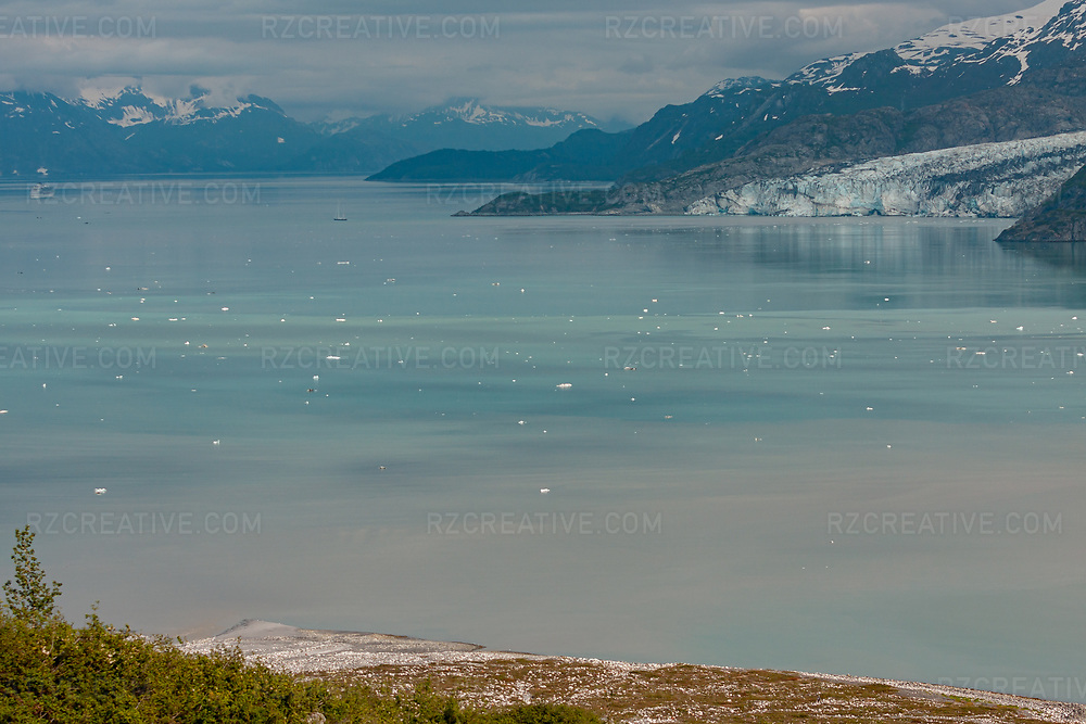 Overlooking Johns Hopkins Inlet in Alaska's Glacier Bay National Park and Preserve. Lamplugh Glacier can be seen in the distance. Photo © Robert Zaleski / rzcreative.com<br /> —<br /> To license this image contact: robert@rzcreative.com