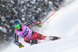 02.12.2018, Beaver Creek, USA, FIS Weltcup Ski Alpin, Beaver Creek, Riesenslalom, Herren, 1. Lauf, im Bild Trevor Philp (CAN) // Trevor Philp of Canada in action during his 1st run of men's Giant Slalom of FIS ski alpine world cup in Beaver Creek, United States on 2018/12/02.12.2018. EXPA Pictures © 2018, PhotoCredit: EXPA/ Johann Groder