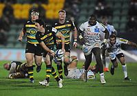 Rugby Union - 2020 / 2021 Heineken Cup - Pool 1 - Northampton Saints vs Bordeaux-Begles - Franklin  Gardens<br /> <br /> Alex Mitchell of Northampton Saints<br /> <br /> COLORSPORT/ANDREW COWIE