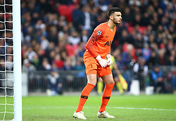 November 6, 2018 - London, England, United Kingdom - London, England - November 06, 2018.Tottenham Hotspur's Paulo Gazzaniga.during Champion League Group B between Tottenham Hotspur and PSV Eindhoven at Wembley stadium , London, England on 06 Nov 2018. (Credit Image: © Action Foto Sport/NurPhoto via ZUMA Press)