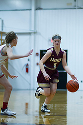 18 January 2020: !st Round Girls Basketball game LeRoy Panthers v Heyworth Hornets during the 109th 2020 McLean County Tournament at El Paso Gridley High School in El Paso IL<br /> <br /> Photo by Alan Look