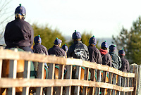 Photo: Alan Crowhurst.<br />Pat Eddery Racing Stables. 01/03/2006. Returning to the stables.