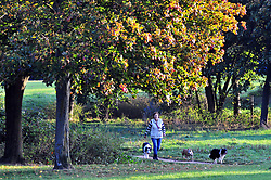 © Licensed to London News Pictures.14/10/2017.<br /> Sidcup, UK.<br /> A sunny autumn morning at Footscray Meadows in Kent. <br /> Britain is set for a bright and sunny weekend before 100mph winds hit the UK next week. <br /> Photo credit: Grant Falvey/LNP