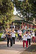 Chinese people practice tai chi martial arts exercise early morning at the Temple of Heaven Park during summer in Beijing, China