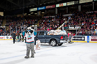 KELOWNA, CANADA - DECEMBER 2: Rocky Raccoon, the mascot of the Kelowna Rockets salutes the fans after the annual teddy bear toss against the Kootenay Ice on December 2, 2017 at Prospera Place in Kelowna, British Columbia, Canada.  (Photo by Marissa Baecker/Shoot the Breeze)  *** Local Caption ***