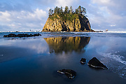 Sunrise strikes a large sea stack reflected in the wet sand at Second Beach, Olympic National Park, Washington.