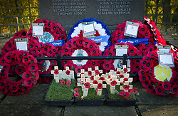© Licensed to London News Pictures. 11/11/2012..Saltburn, Cleveland, England..The Remembrance Day parade and service takes place in the Cleveland seaside town of Saltburn by the Sea...Photo credit : Ian Forsyth/LNP
