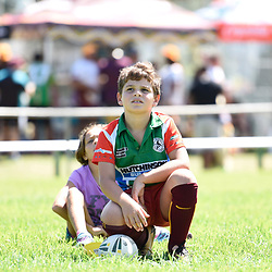 BRISBANE, AUSTRALIA - MARCH 18: A junior looks on during the NRL Development Junior Clinic and QRL training session at Ron Stark Oval on March 18, 2017 in Brisbane, Australia. (Photo by Patrick Kearney/Wynnum Manly Seagulls)