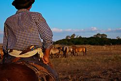 Homem e cavalo companheiros de lida e vida. Detalhes para os arreios e encilhas. FOTO: Eduardo Rocha/Preview.com