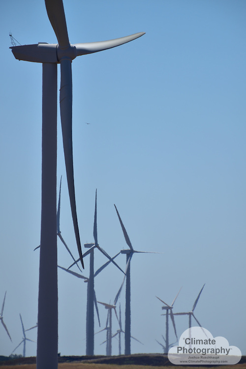 #SignOfClimateProgress<br /> <br /> The Shiloh Wind Power Plant was installed in four phases, one of which was repowered from much smaller and older-design lattice-tower turbines that were installed in 1989.  <br /> <br /> Climate change emissions from fossil fuels in excess of the planet's ability to balance that carbon output with natural carbon consumption requires humanity to switch to renewable forms of power generation, such as wind turbines. Wind turbines can be mortally dangerous to birds and bats, however.
