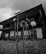 I love abandoned buildings. Especially ones that are open, unike this one. Missoula Photographer, Missoula Photographers, Montana Pictures, Montana Photos, Photos of Montana