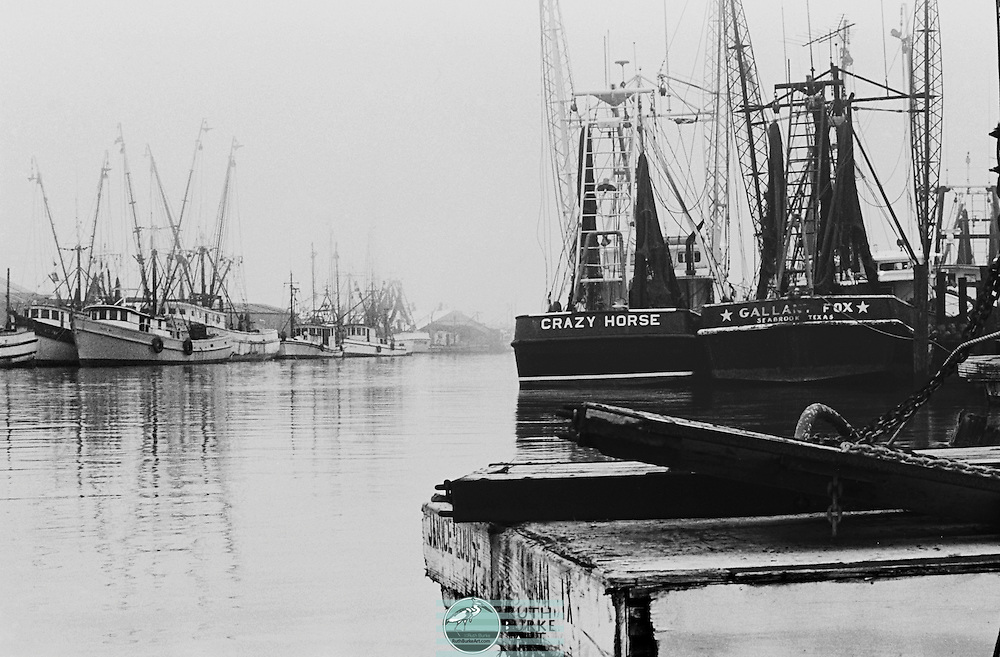 Shrimp boats in 1978 on the Kemah and Seabrook waterfronts on the Texas Gulf Coast. Includes the Crazy Horse and <br /> Galiant Fox Shrimp boats.