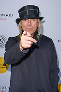 Robin Zander attends the Adopt the Arts benefit concert and auction for music and arts programs in LAUSD schools on May 12, 2016 at the Fonda Theater in Hollywood, California. (Photo: Charlie Steffens/Gnarlyfotos)