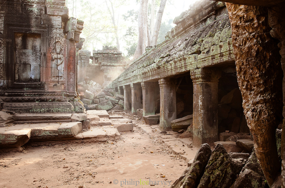 Ta Prohm temple at Angkor, Siem Reap Province, Cambodia
