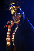 August 22, 2015- Brooklyn, NY-United States:  Recording Artist Grace Jones performs at the 2015 AFROPUNK Festival on August 22, 2015 held at Commodore Barry Park in Brooklyn, New York City.  AFROPUNK is an influential community of young, gifted people of all backgrounds who speak through music, art, film, comedy, fashion and more. Originating with the 2003 documentary that highlighted a Black presence in the American punk scene, it is a platform for the alternative and experimental.(Terrence Jennings/terrencejennings.com)