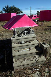 Dec 03 2007. New Orleans, Louisiana. Lower 9th Ward.<br /> Brad Pitt revisits the Lower 9th ward, devastated by Hurricane Katrina to present 'Make it Right' where architects' designs are unveiled to the public. As part of the 'Pink Project' in association with Graft architects of Los Angeles the devastated neighborhood was filled with pink structures to help draw attention to the plight of the area. Images of pink structures with front steps and blight, all that remains of properties washed away in the Lower 9th ward flood.<br /> Photo credit; Charlie Varley.