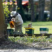 NLD/Laren/20100419 - Imkers aan het werk bij hun kassen in Laren