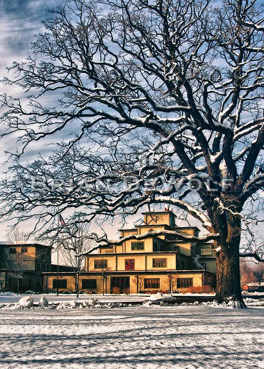 An esteemed oak tree's crackling branches frame Riverbank Laboratories in Geneva, Illinois