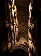 Barrels in a cellar, Cadière d'Azur near Bandol, France