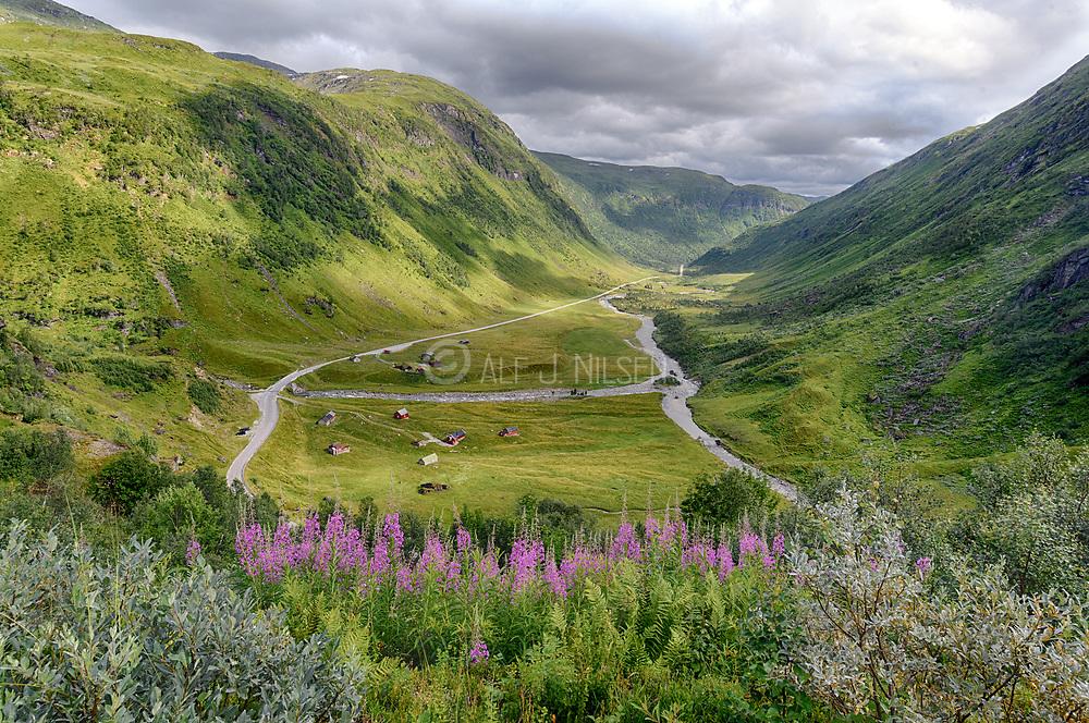 Myrkdalen, a green valley at Vossastrand (Vestland county), Norway in July.