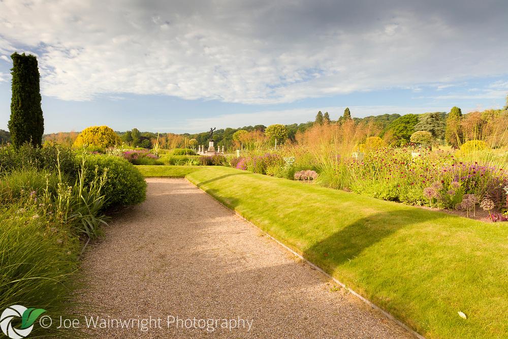 The Italian Garden at Trentham Gardens, Staffordshire - designed by Tom Stuart-Smith. Planting includes fastigate Irish yews, Geraniums, Knautia macedonica, Allium seedheads and Stipa gigantea