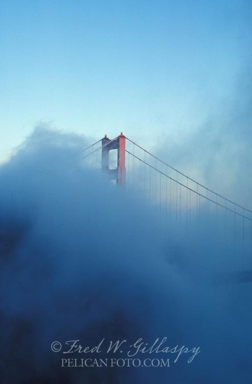 Golden Gate Bridge from Fort Cronkite ~ Rising from the fog