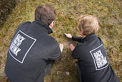 RSPB's Jane Sears and Back from the Brink's James Harding-Morris watching a recently translocated Field cricket Gryllus campestris, RSPB Farnham Heath Nature Reserve, Surrey, April