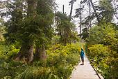 Rockaway Cedar Wetlands Trail