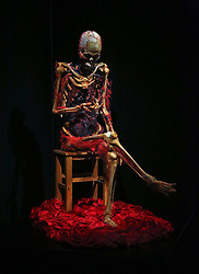 October 20, 2016 - Florida, U.S. - This exhibit showing a human body's cardiovascular system and blood vessels is part of the South Florida Science Center and Aquarium's new exhibit called Our Body: The Universe Within, Thursday, October 20, 2016. Museum officials say the exhibit literally ''goes under the skin'' to reveal the mysteries and inner workings of the human body. Damon Higgins / The Palm Beach Post (Credit Image: © Damon Higgins/The Palm Beach Post via ZUMA Wire)