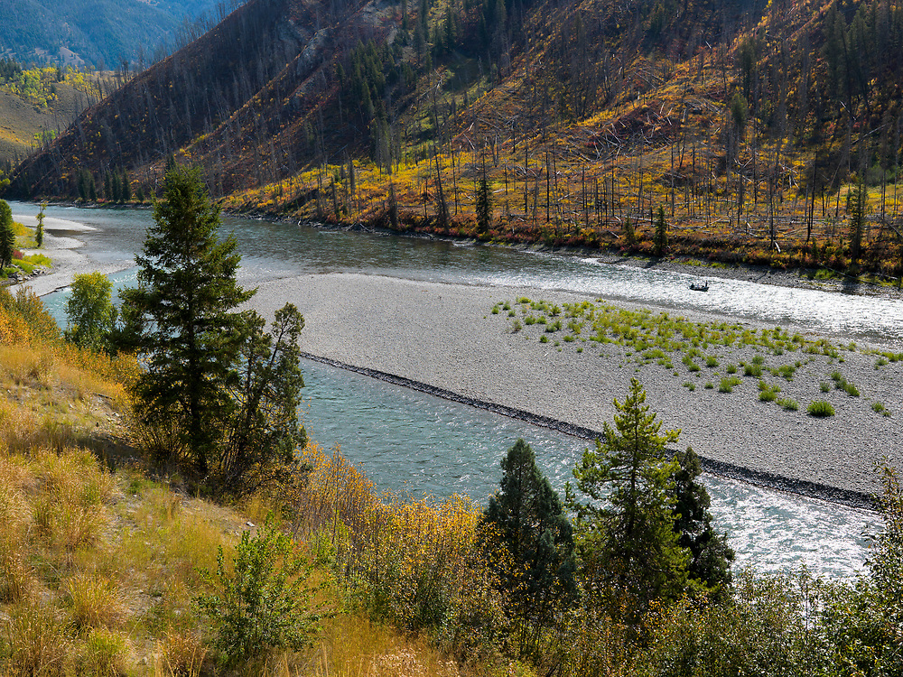 Drift boat fishermen admire the amazing fall colors along the banks of the Snake River near Jackson Wyoming. Licensing and Open Edition Prints.