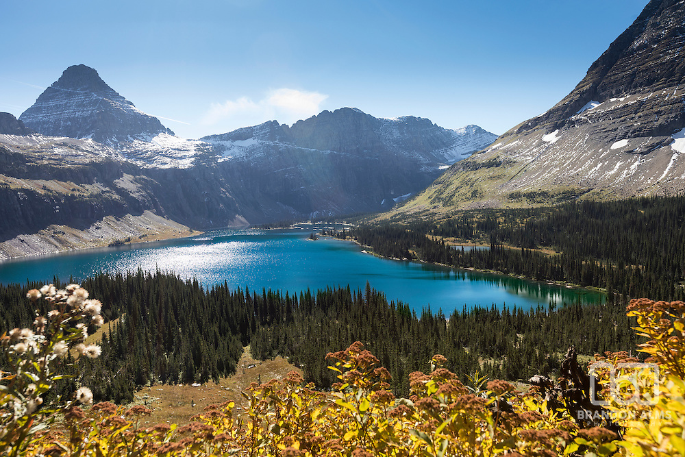 Fall colors in the foreground shine overlooking Hidden Lake in Glacier National Park, Montana.