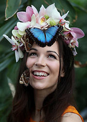Model Jessie May Smart with Blue Morpho and Giant Owl butterflies during a photocall for RHS Garden Wisley's Butterflies in the Glasshouse exhibition in Woking, Surrey.