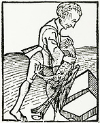'Extracting the Cock-stone, an animal concretion with supposed magical properties. Woodcut from ''Ortus Sanitatis'', Strasbourg, 1483 by Johannis de Cuba.'