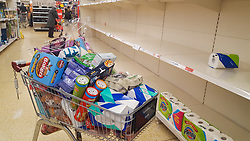 © Licensed to London News Pictures. 12/03/2020. London, UK. A trolly full of shopping as Sainsbury's store in London runs out of toilet rolls amid an increased number of cases of Coronavirus (COVID-19) in the UK. 590 cases have been tested positive and ten patients have died from the virus in the UK. Photo credit: Dinendra Haria/LNP