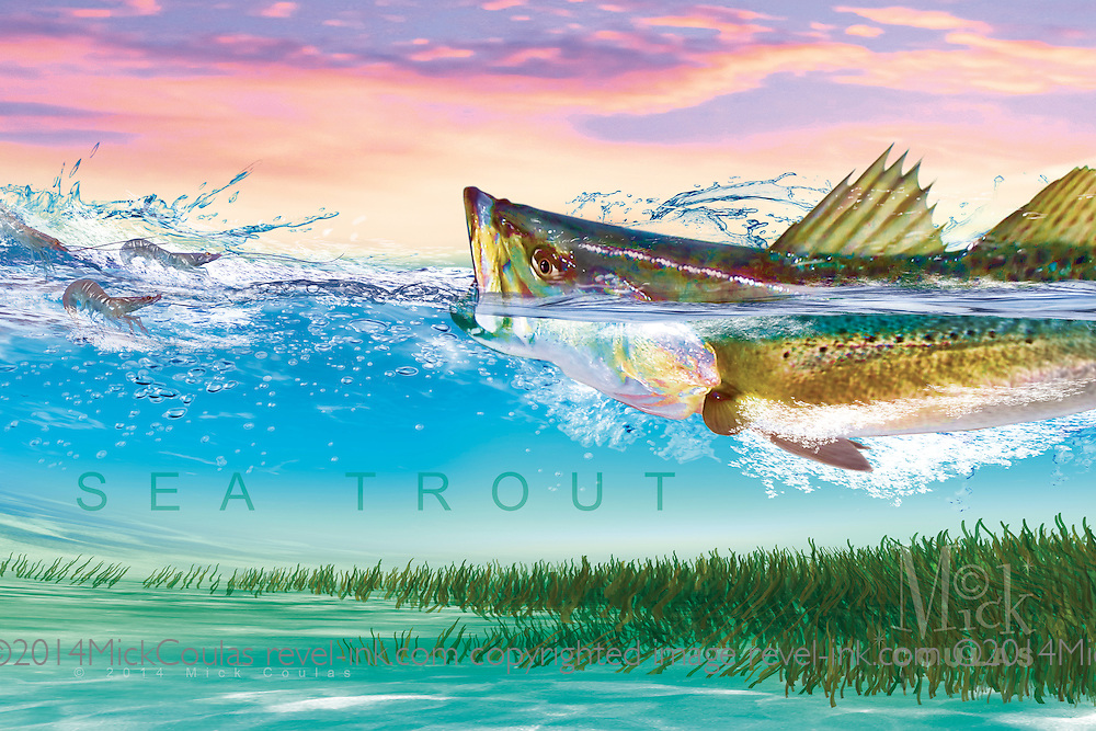 The Pursuit Series™ by Mick Coulas captures several species of game fish pursuing bait, available for license to be reproduced on clothing, prints and gifts that every fisherman will enjoy. This design features Sea Trout pursuing Shrimp. © Registered Call for Information.