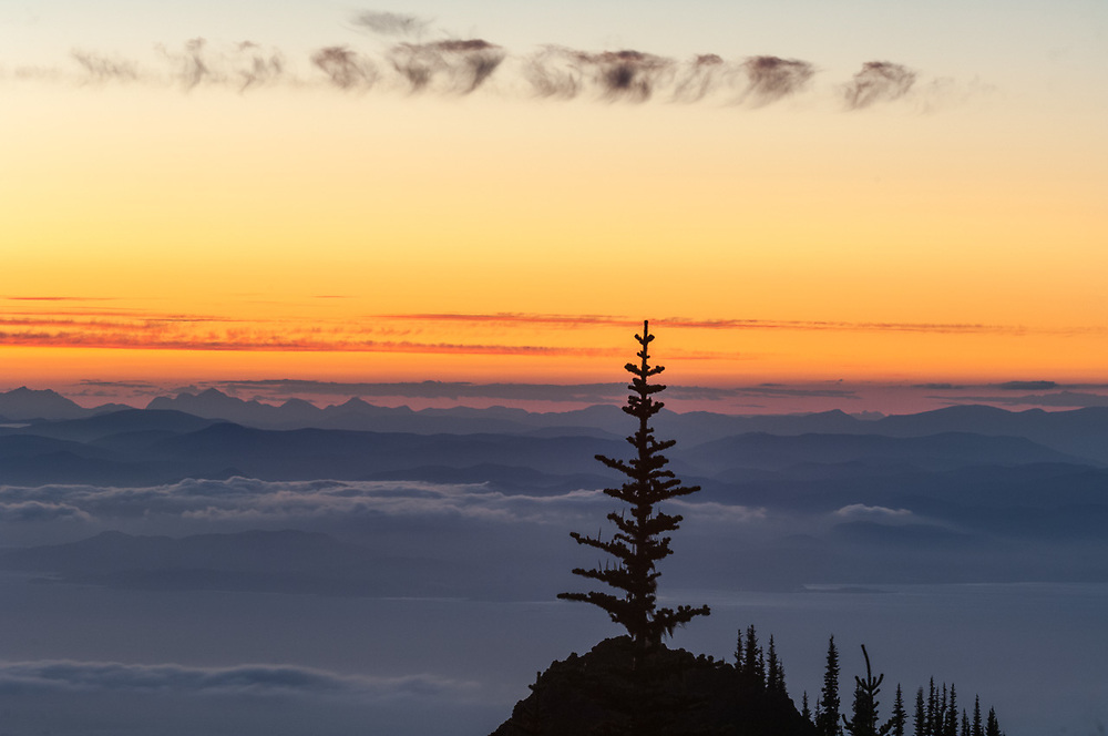 Strait of Juan de Fuca and Vancover Island, evening light view from Blue Mountain, July, Olympic National Park, Clallam County, Washington, USA