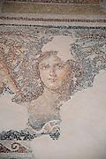 "Israel, Lower Galilee, Zippori National Park The city of Zippori (Sepphoris) A Roman Byzantine period city with an abundance of mosaics Mosaic floor of the roman villa The ""Mona Lisa of the Galilee"""