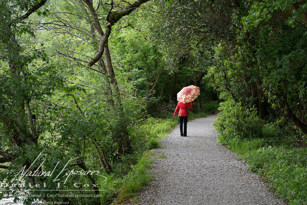 Walking a trail in Killarney National Park, Ireland.