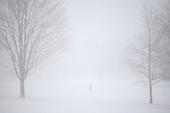 Brooklyn Snow Storm of 2010