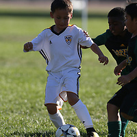 Ballistic United in a Youth soccer Game at Dublin Sports Complex, Dublin CA on 9/22/18. (Photograph by Bill Gerth)