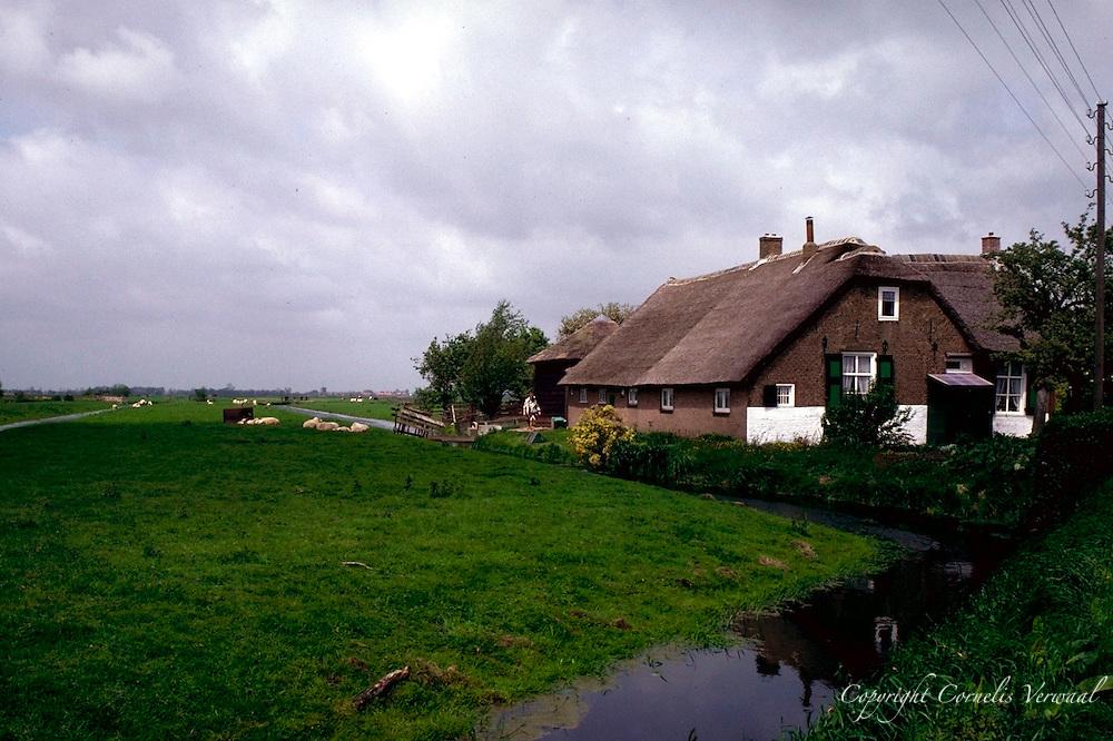 Farmhouse in De Buurt in Bergambacht, The Netherlands